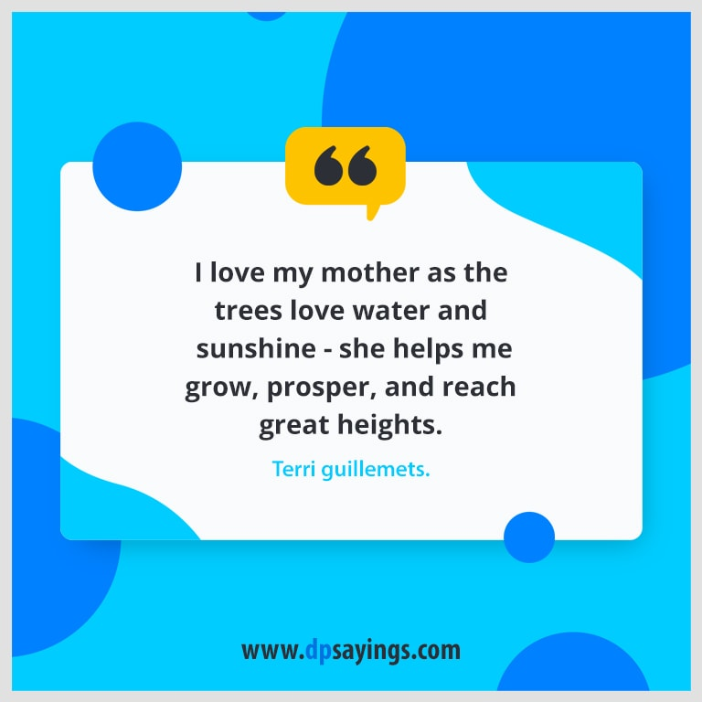 60 Excellent I Love You Mom Quotes and Sayings - DP Sayings