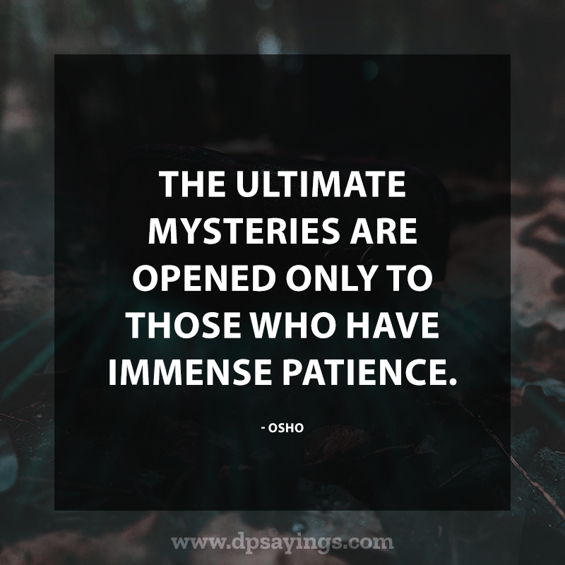 Best Patience Quotes And Sayings 48