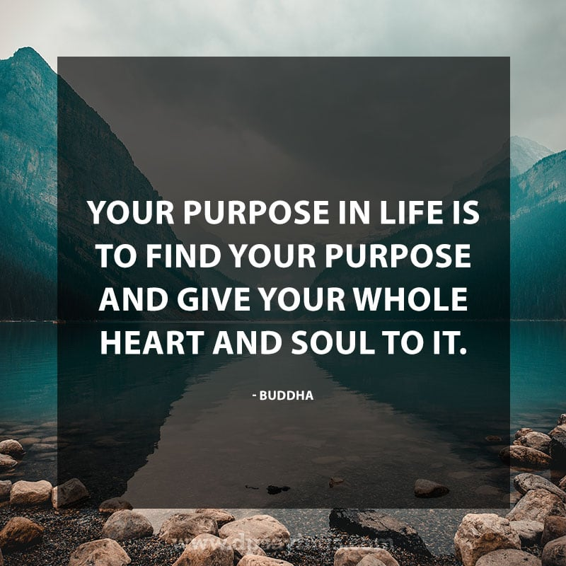 "Inspirational Hard Work Quotes And Sayings 12 ""Your purpose in life is to find your purpose and give your whole heart and soul to it."" – Buddha"