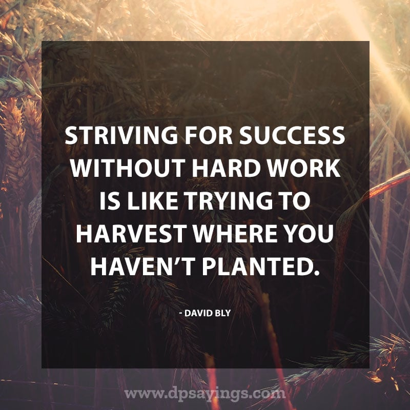 "Inspirational Hard Work Quotes And Sayings 28 ""Striving for success without hard work is like trying to harvest where you haven't planted."" – David Bly."
