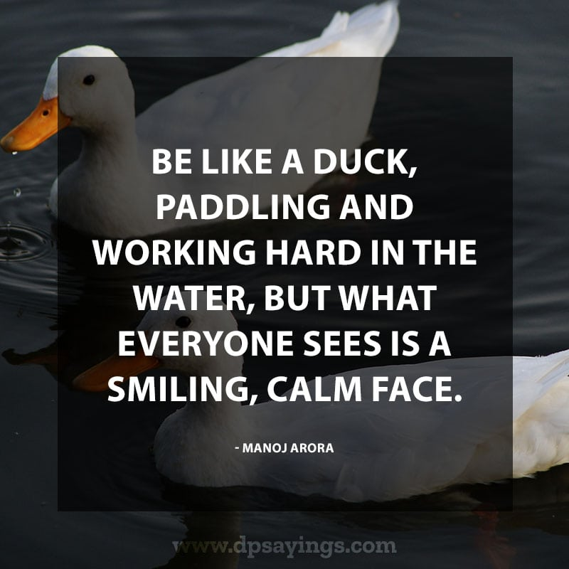 "Inspirational Hard Work Quotes And Sayings 68 ""Be like a duck, paddling and working hard in the water, but what everyone sees is a smiling, calm face."" – Manoj Arora"