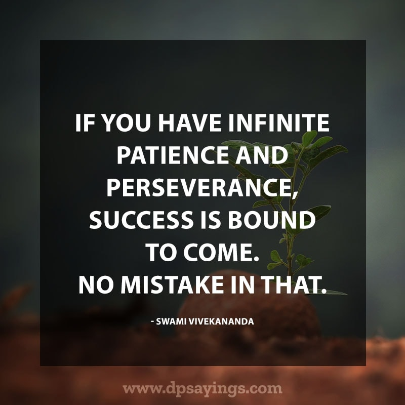 Perseverance Quotes And Sayings 16