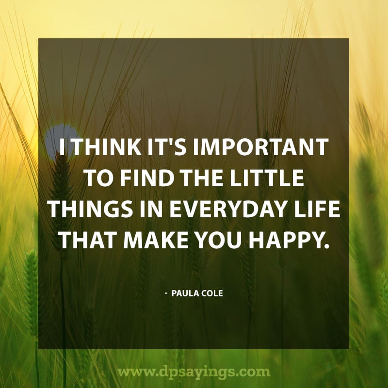 "Daily life quotes 28 ""I think it's important to find the little things in everyday life that make you happy."" – Paula Cole"