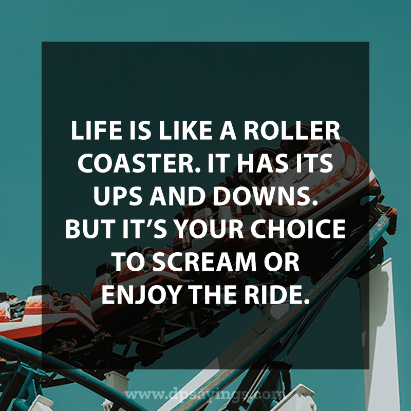 Life is like a roller coaster.