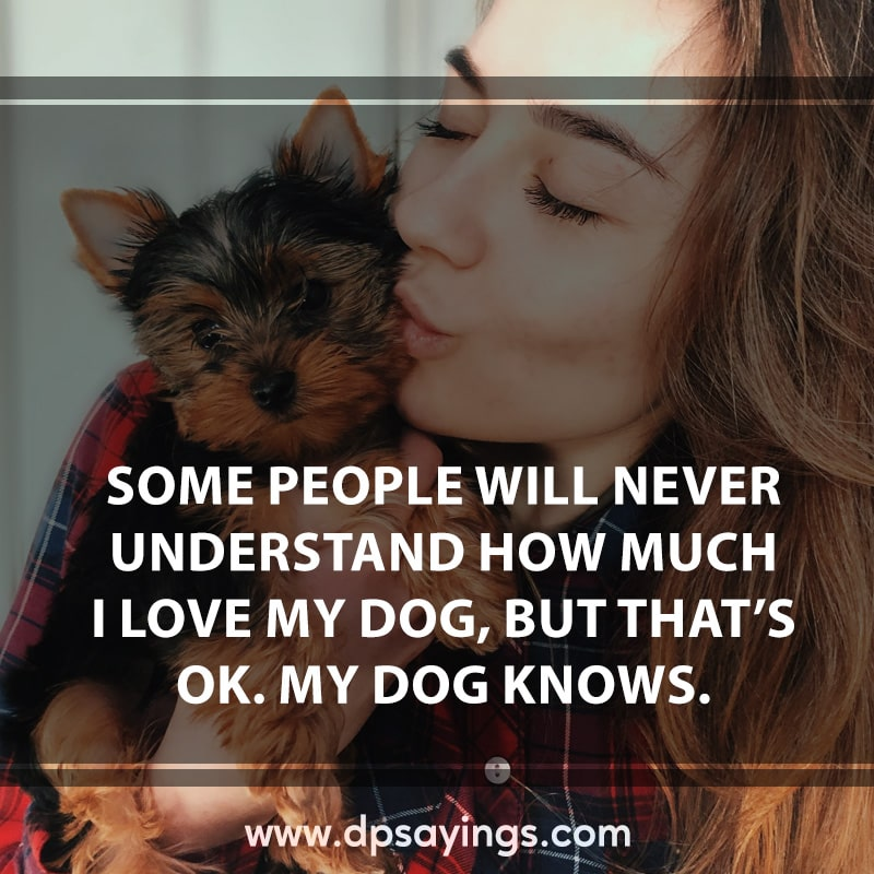 13 love for dog quotes and sayings