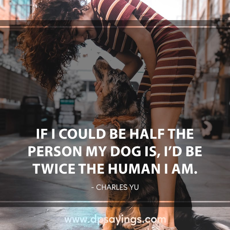 19 dog quotes and sayings