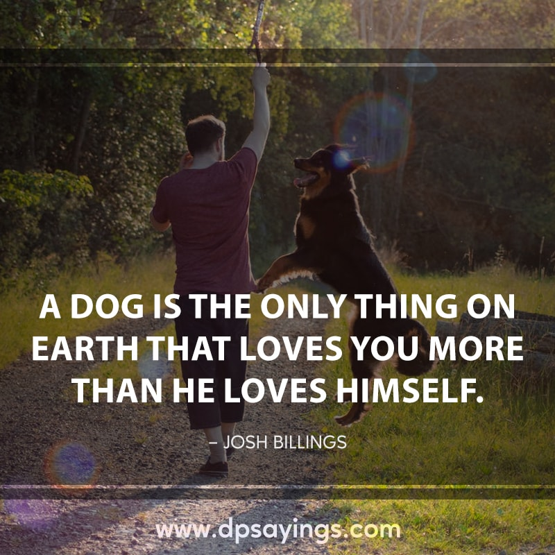 Great dogs quotes and sayings 2