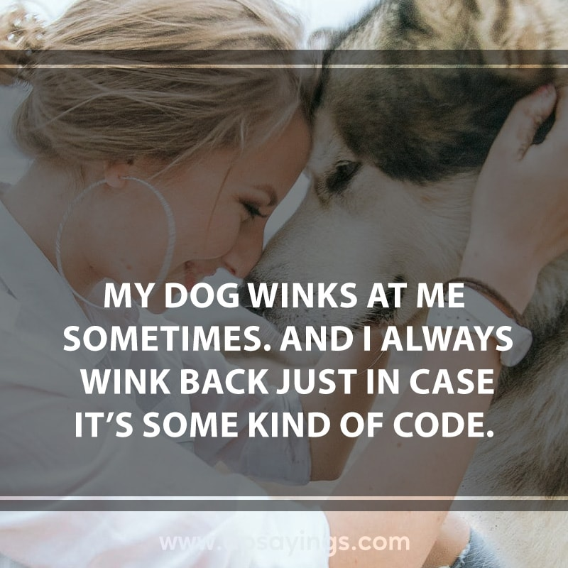 dog quotes cute 4