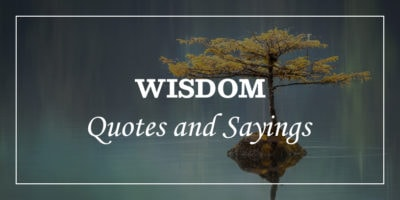 Featured Image for wisdom quotes and sayings