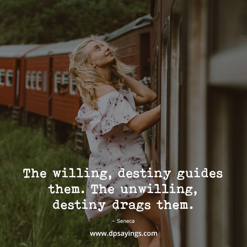 """Destiny Quotes """"For the willing, destiny guides them."""""""
