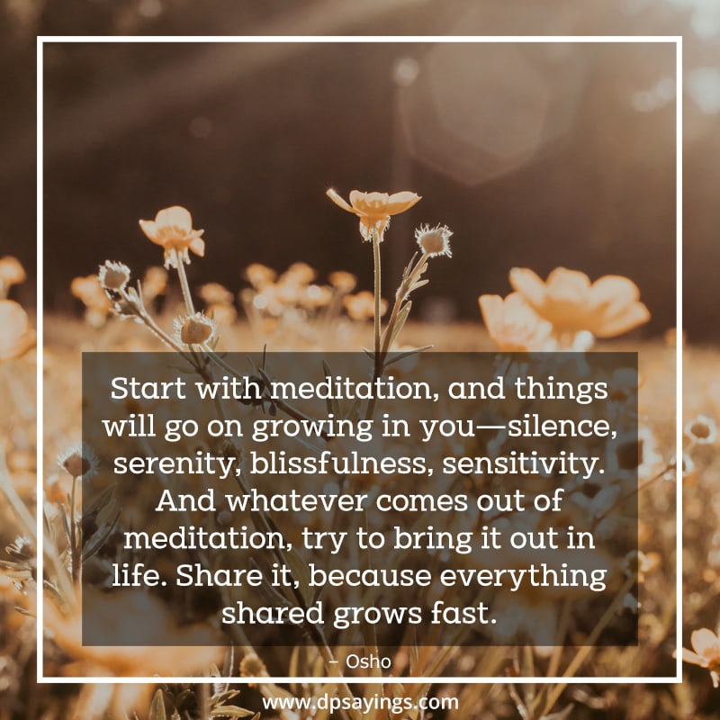 A quote on meditation which tells Start with meditation, and things will go on growing in you—silence, serenity, blissfulness, sensitivity.