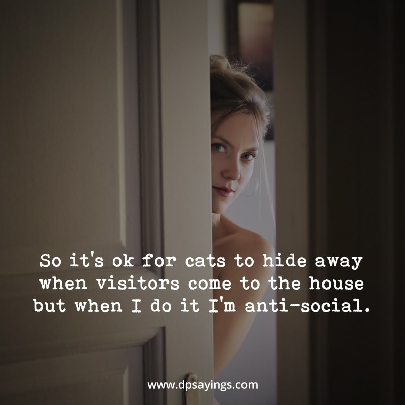 Funny introvert quotes