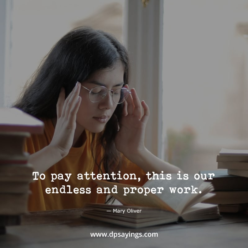 """Mindfulness quotes """"Pay attention, this our endless and proper work."""""""